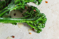 Fresh steamed broccolini Stock Images