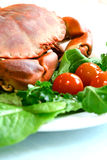 Fresh steamed crab Stock Images