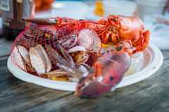 Fresh steamed 1lb lobster with mussels and clams. For lunch outdoor meal stock photos