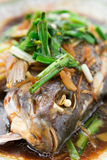 Fresh steamed whole fish covered with herbs onions and sauce Stock Images