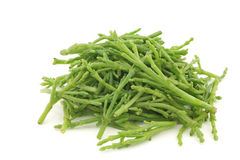 Fresh stems of Samphire Stock Photo