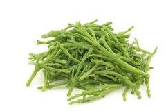 Fresh stems of Samphire. Fresh stems of semphire on a white background Stock Photo
