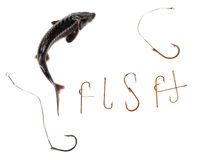 Fresh sterlet and word F I S H composed of old rusty fish hooks. Isolated on white background with copy space Royalty Free Stock Photo