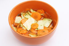 Fresh Stew Royalty Free Stock Images