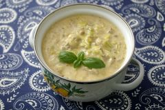 Soup of cheese and minced meat. A fresh stew of leak and minced meat Stock Image