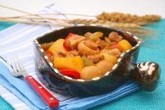 Fresh stew with meat and mushrooms Stock Image