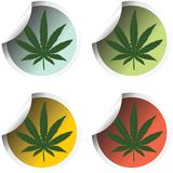 Fresh stick labels with marijuana Royalty Free Stock Image