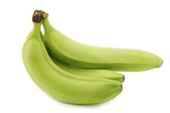 Fresh still unripe bananas Stock Photography