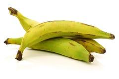 Fresh still unripe plantain (baking) bananas Royalty Free Stock Photos