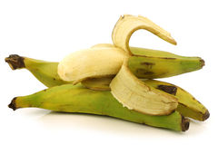 Fresh still unripe plantain (baking) bananas Royalty Free Stock Photo