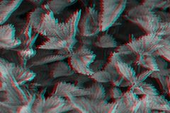 Fresh stinging nettle, natural background. Urtica dioica. Digital signal glitch effect rgb shift, slices. Screen error.  royalty free stock photo