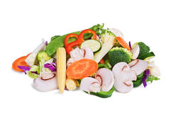 Fresh stir fry  vegetables Royalty Free Stock Photo