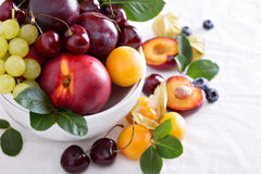 Fresh stone fruits in white bowl Stock Photography