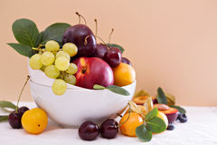 Fresh stone fruits in white bowl Royalty Free Stock Images