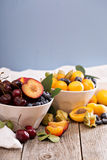 Fresh stone fruits in white bowl Stock Images