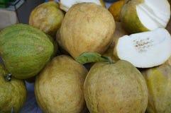 Fresh strange fruits Yemenite citron Stock Photo