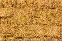 Fresh straw hay bales background Stock Photo