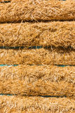 Fresh straw hay bales background Royalty Free Stock Images