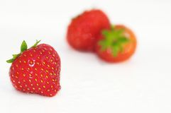 Fresh Strawberries royalty free stock photography