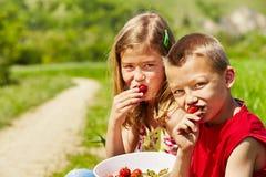 Fresh strawberries Stock Image