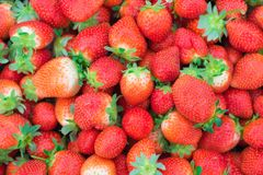 Fresh strawberries background stock images