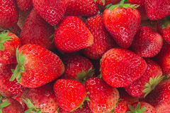 Fresh strawberries. Background from freshly strawberries. Top view stock images