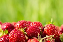 Fresh strawberries on a background of green grass Stock Photography