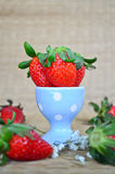 Fresh strawberries in a blue cup Stock Image
