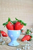 Fresh strawberries in a blue cup Royalty Free Stock Images