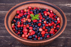 Fresh strawberries and blueberries , wild berry. Stock Images