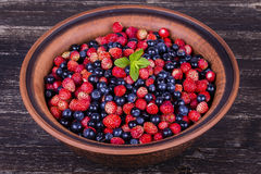 Fresh strawberries and blueberries , wild berry. Royalty Free Stock Photos