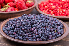 Fresh strawberries and blueberries , wild berry. Royalty Free Stock Photography