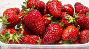 Fresh strawberries in bowl Royalty Free Stock Photography
