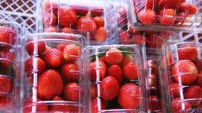 Fresh strawberries in box. Fresh strawberries in Garden plastic box Royalty Free Stock Images