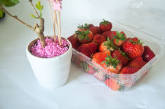 Fresh strawberries in box Stock Photo