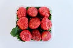 Fresh strawberries in clear box Stock Photo