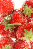 Fresh strawberries close up. With bubbles royalty free stock photo