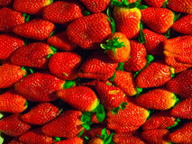 Fresh Strawberries. In close up details Royalty Free Stock Image