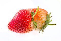 Fresh strawberries. Close-up of fresh strawberries on white background Royalty Free Stock Photos
