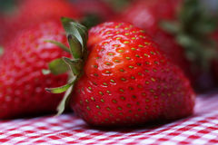 Fresh Strawberries Close Up Stock Photos