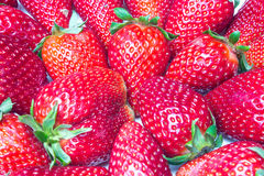 Fresh Strawberries Closeup. With seeds Stock Photography