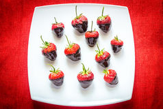 Fresh strawberries covered with dark chocolate Stock Photo