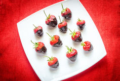 Fresh strawberries covered with dark chocolate Stock Photography