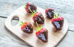 Fresh strawberries covered with dark chocolate Stock Images