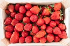 Fresh Strawberries Crop Stock Photos
