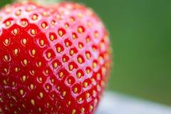 Fresh Strawberries (3) Royalty Free Stock Photos