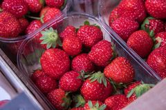 Fresh Strawberries in a fresh food market Royalty Free Stock Photos
