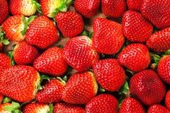 Fresh Strawberries Full Frame Background Stock Images