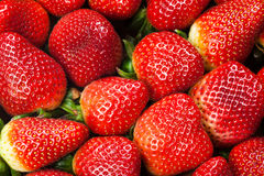 Fresh Strawberries Full Frame Background Stock Photography