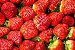 Fresh Strawberries Full Frame Background Stock Photo